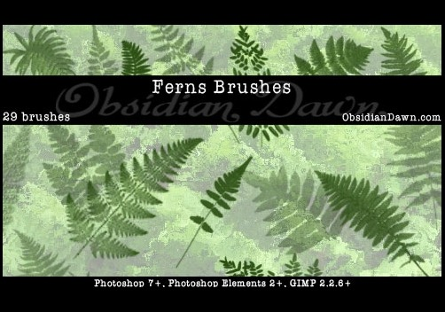 ferns-photoshop-brushes