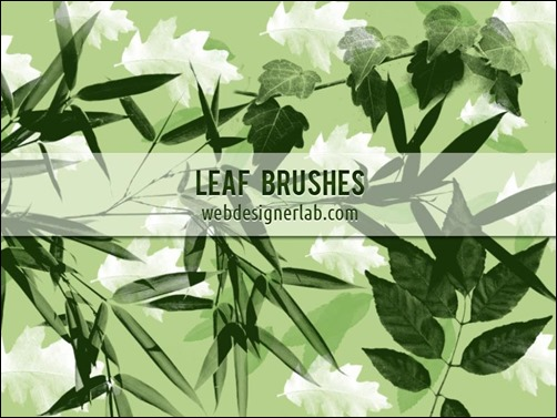 leaf-brushes