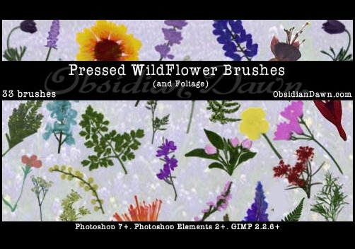 pressed-wildflower-brushes