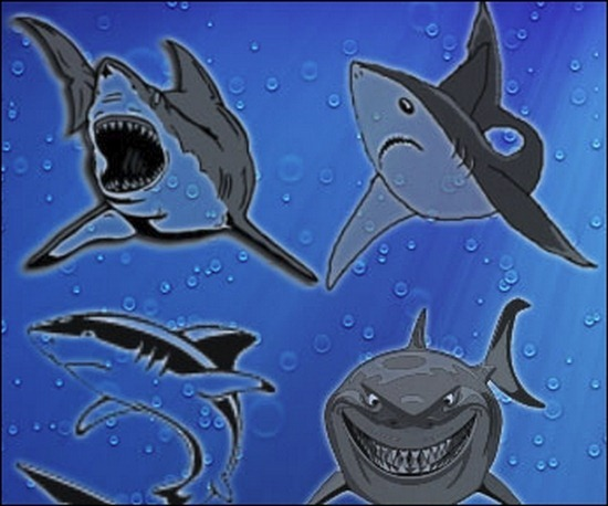 shark-brushes