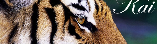 tiger-brush