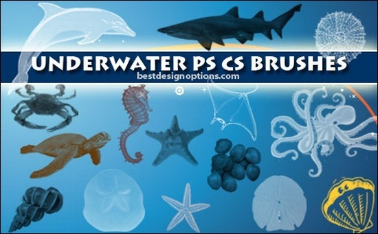 underwater-brushes
