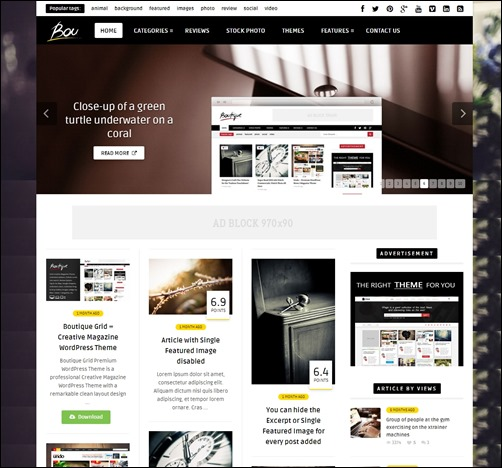 Bou-wordpress-review-theme